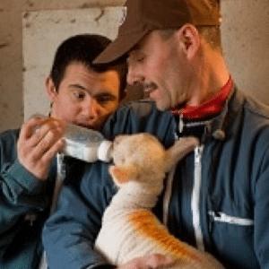 Médiation animale : Entretenir et développer l'autonomie