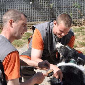 Médiation animale : Retrouver sa place dans la société