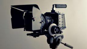 camera- médiation animale